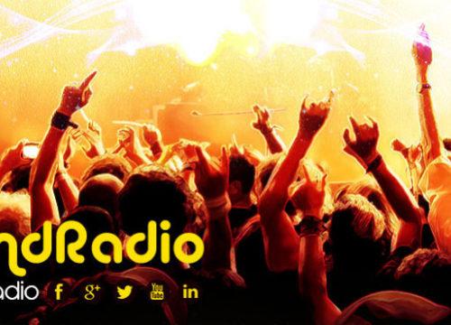 INTO THE JUNGLE – VALLILAND RADIO